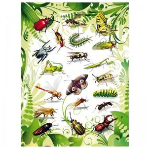 Etiquette magique HERMA Insectes, film 2D